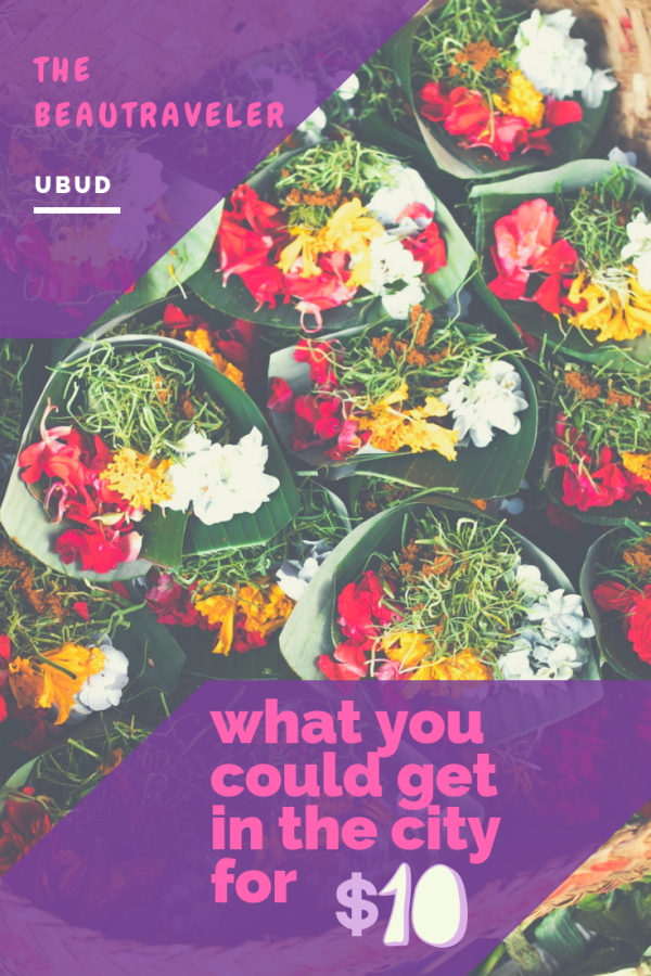 What You Could Get in Ubud for $10 - The BeauTraveler