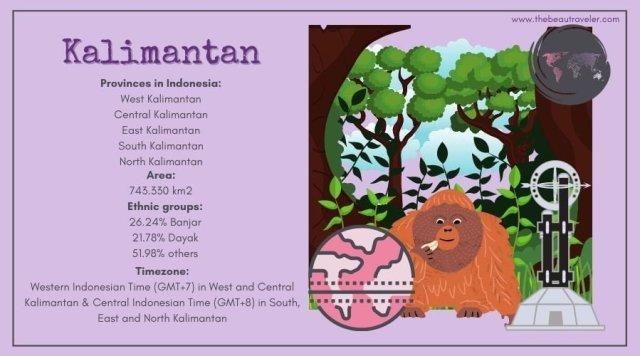 Borneo infographic.