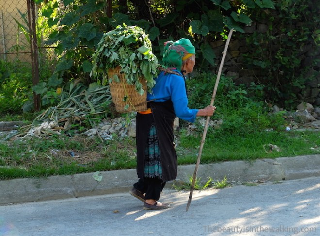 Old Hmong lady