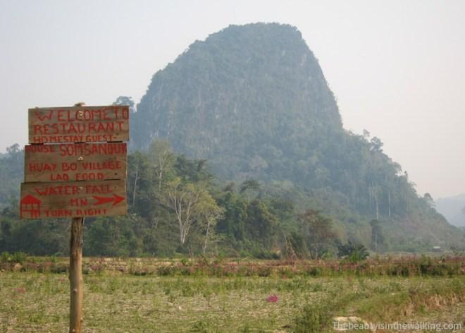 randonnées dans les rizières, Muang Ngoi