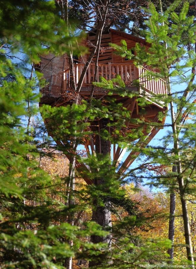 """Tree house """"Cabane du bois Mauret"""", Col de L'Arzelier, Vercors, French Alps"""