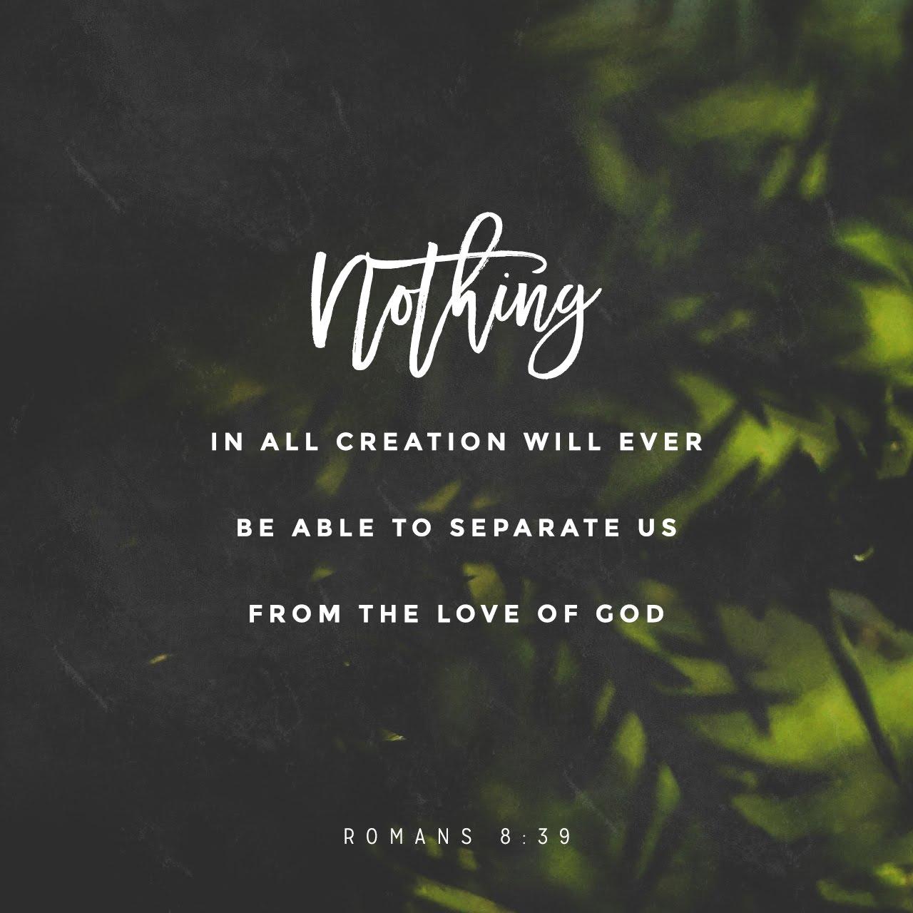 ScriptureArt_0817_-_Romans_8_39_NLT_English.jpg