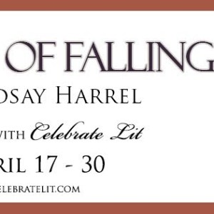 The Joy of Falling – Review Tour