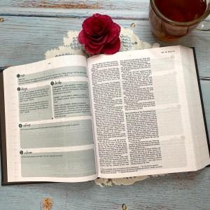 NIV Verse Mapping Bible