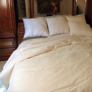 bio sleep organic comforter