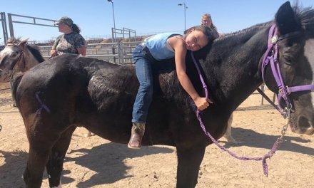 "Girl's Loss Of Horse Kicks Off ""Rally Around Aly"" Fundraiser"