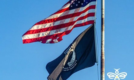 LHC Parks and Recreation News-Temporary Closure of McCulloch Boulevard for the Veterans Day Parade