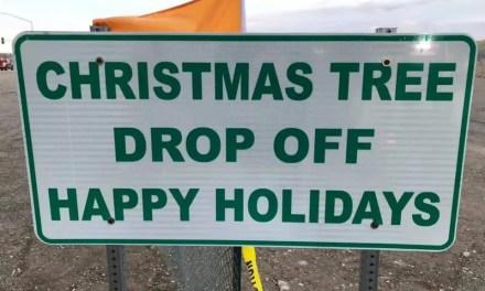 Tree Drop Off