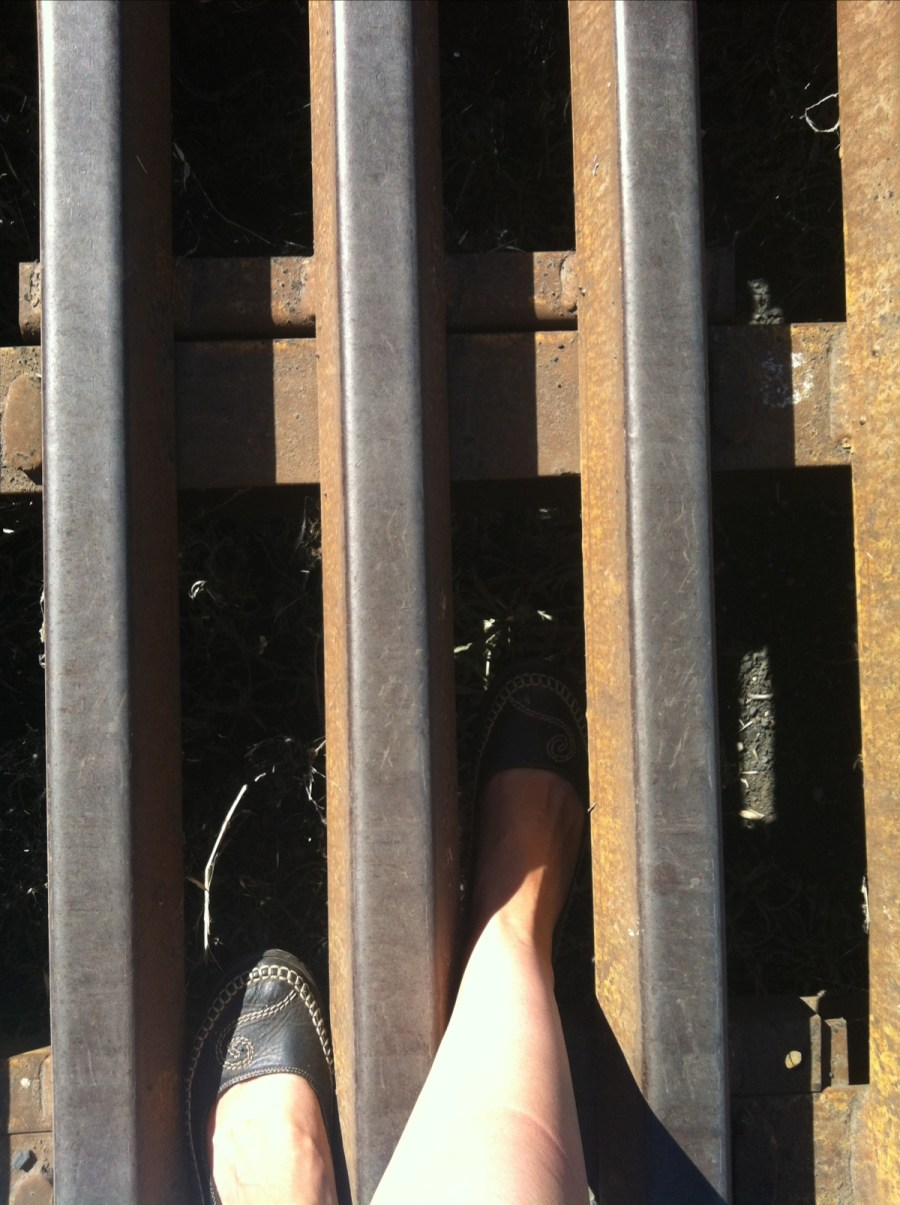 See my foot? It fits right in between the metal bars - a animal's hoof would do the same thing. But it looks so scary to an animal they really DO NOT like to get near it.