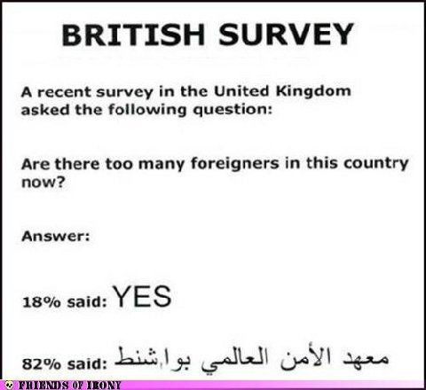 funny-survey-quotes_253746