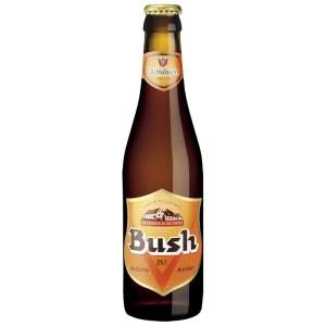bush-ambree-bouteille-33