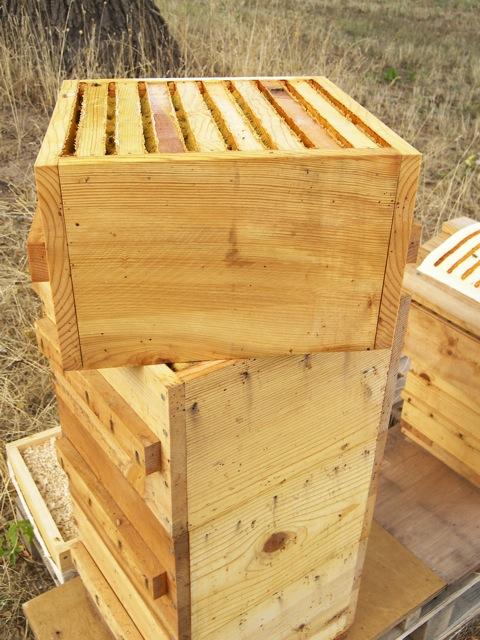 Twisting the Top Warre Hive Box