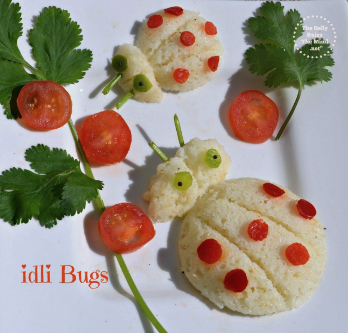 idli bugs food art