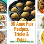 30 Appe Pan Recipes, Tricks & Video.