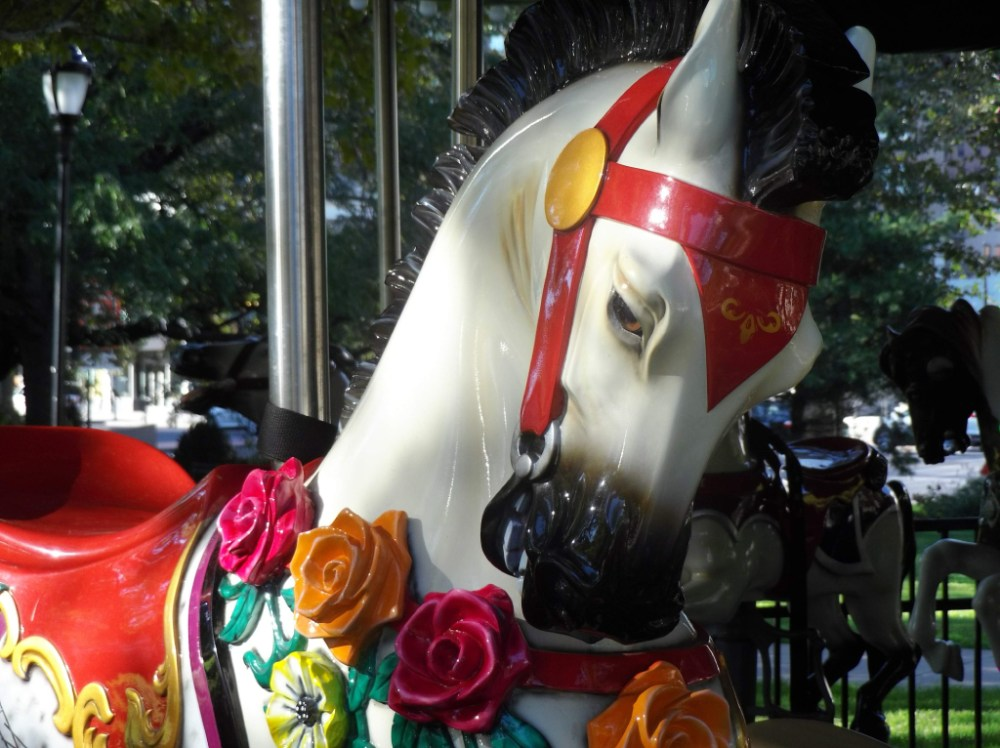 Carousel-Horses-Roses