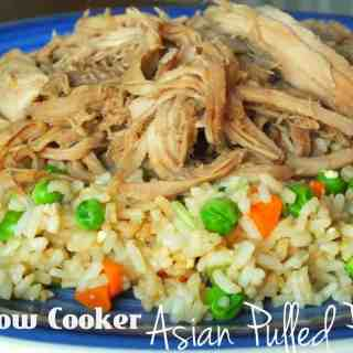 Slow Cooker Asian Pulled Pork