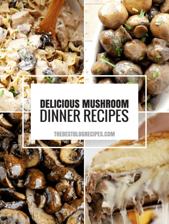 Best Mushroom Recipes