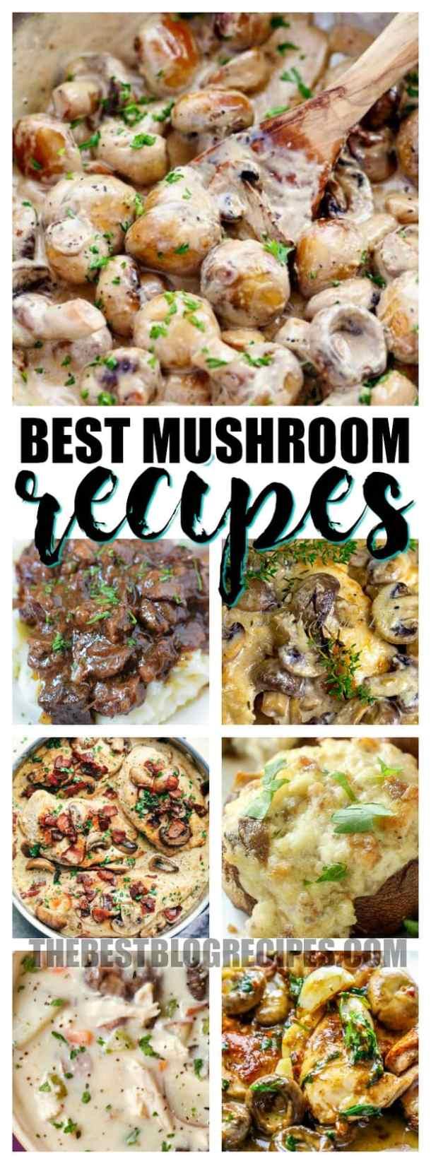Delicious Mushroom Dinner Recipes