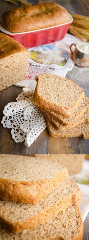 TRADER JOE'S COPYCAT HARVEST WHOLE WHEAT BREAD lonpin