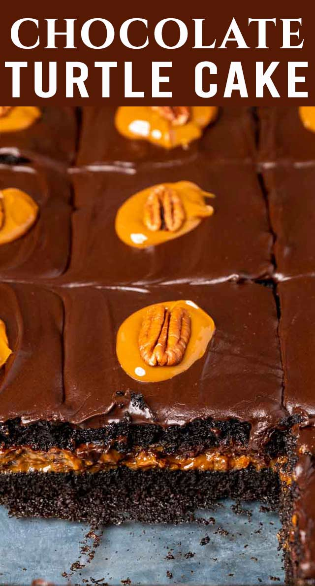 The most decadent cake you'll ever have! Dark chocolate cake with dulce de leche caramel and pecan filling. And for a touch more sweet, chocolate frosting on top. via @thebestcakerecipes