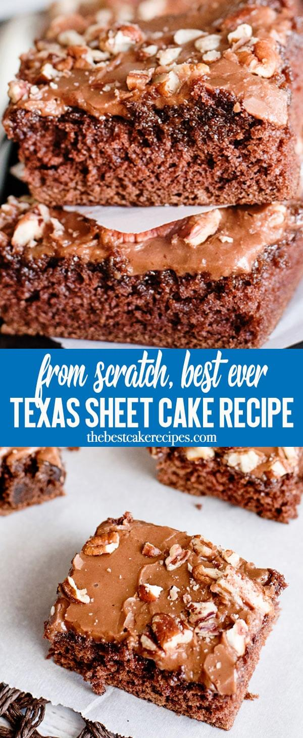 Chocolate Texas Sheet Cake with buttery cocoa frosting that melts in your mouth. This is the ultimate chocolate cake that is easy to take to potlucks. Perfect served with a scoop of ice cream!