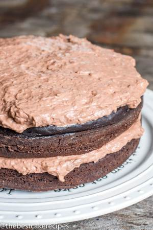 two layer sugar free chocolate cake on a cake stand