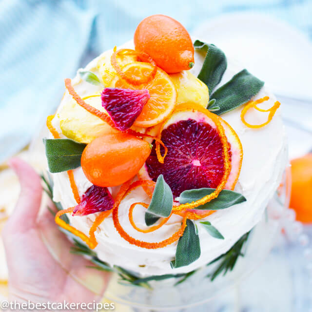 overhead view of an orange topped cake