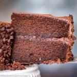 Barley Flour Chocolate Cake on a spatula