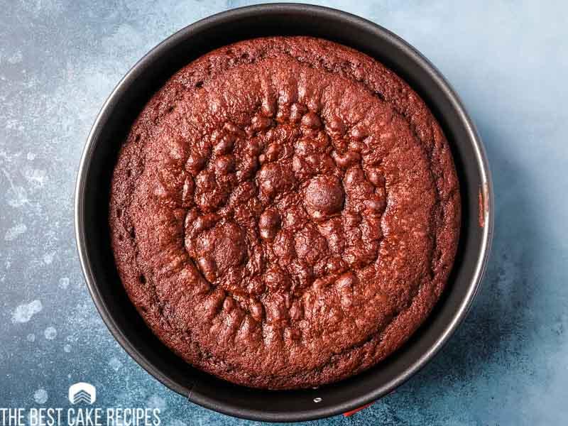 chocolate cake in springform pan