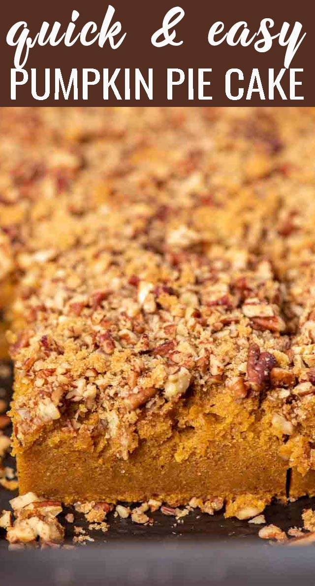 Jazz up a boxed cake mix for an amazingly easy pumpkin pie cake that your family will love! Topped with brown sugar and pecans, every bite is a pumpkin spice dream. via @thebestcakerecipes
