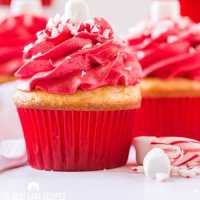 christmas cupcake with red frosting