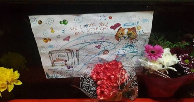 Children left messages at the bus stop where Missy was often seen