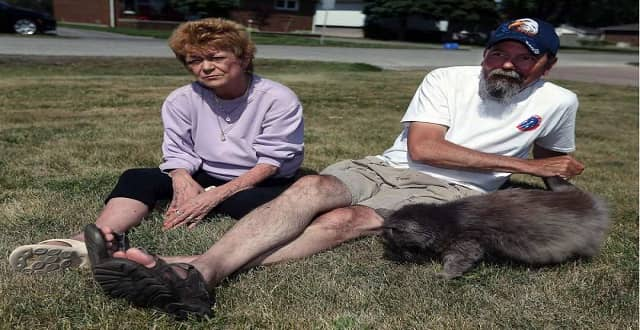 Elizabeth Cash, left, and Robert Buck play with their cat Booba on the lawn of their home in LaSalle on June 14, 2016.