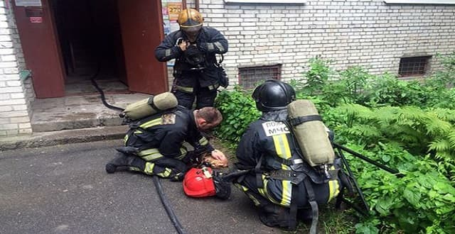 Firefighters were called to a blaze in St Petersburg where they discovered a dying cat