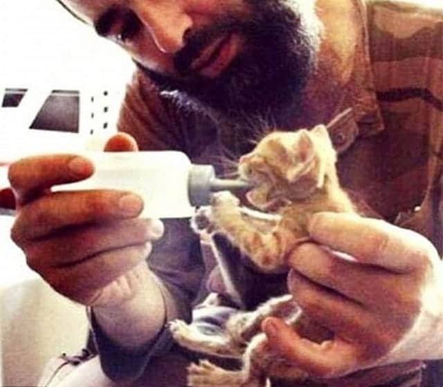 In the last few years, ISIS fighters have been posing with cats in a bid to attract a new breed of young fighters (Picture: Twitter)