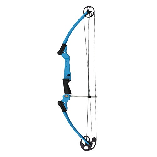 Best Compound Bow Reviews 2017: Fastest for Hunting