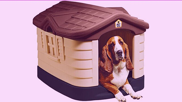 Cozzy cottage for dog