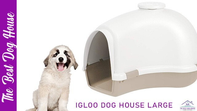 Igloo dog house large