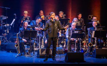 eight_col_Wellington_Jazz_Festival_2018_-_John_Beasley's_MONK'estra_show_-_please_credit_Stephen_ACourt-HB3880