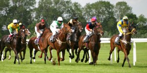 How Do You Read Horse Racing Form? — A Simple Guide