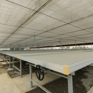 GREENHOUSE FLOOD BENCHES