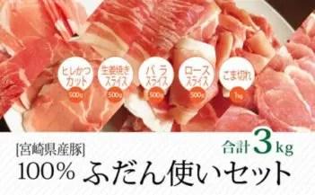 宮崎県産豚 普段使いセット 合計3kg