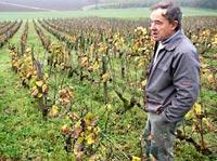 vin templar