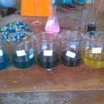 Utilization of the Butterfly Pea Flower Extract (Clitoria ternatea) as a Multi Functional and Economical Acid Base Indicator