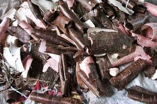 Desalination Using Cellulose Acetate Membrane From Cassava Skin