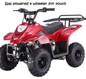 gas powered 4 wheeler for youth