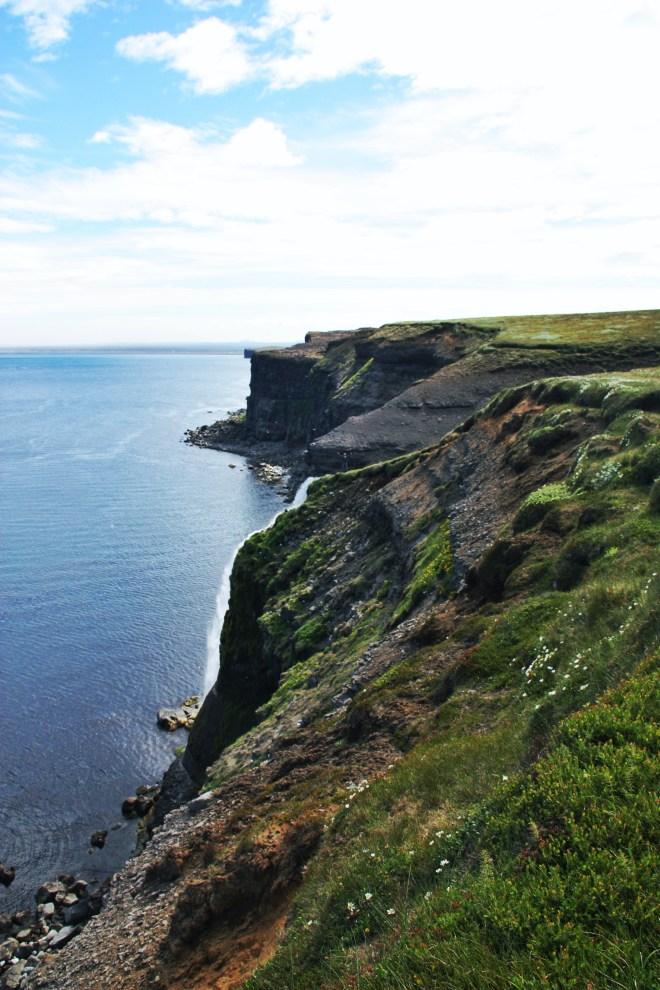 Northern Coastline Iceland in Summer