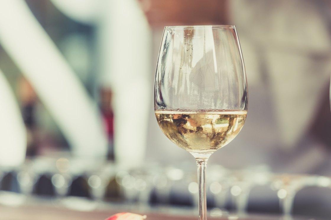 jardin gerard cerebro frito wine bar munich villa stuck pop up the better places travel blog