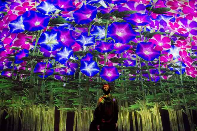 thebetterplaces_digitalmuseumtokyo_Spirits of the Flowers_july