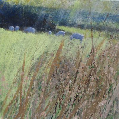 _squaresheep_grazing_in_the_late_evening_sun._acrylic_on_canvas._12_x_12_ins_30_x_30_cm_1